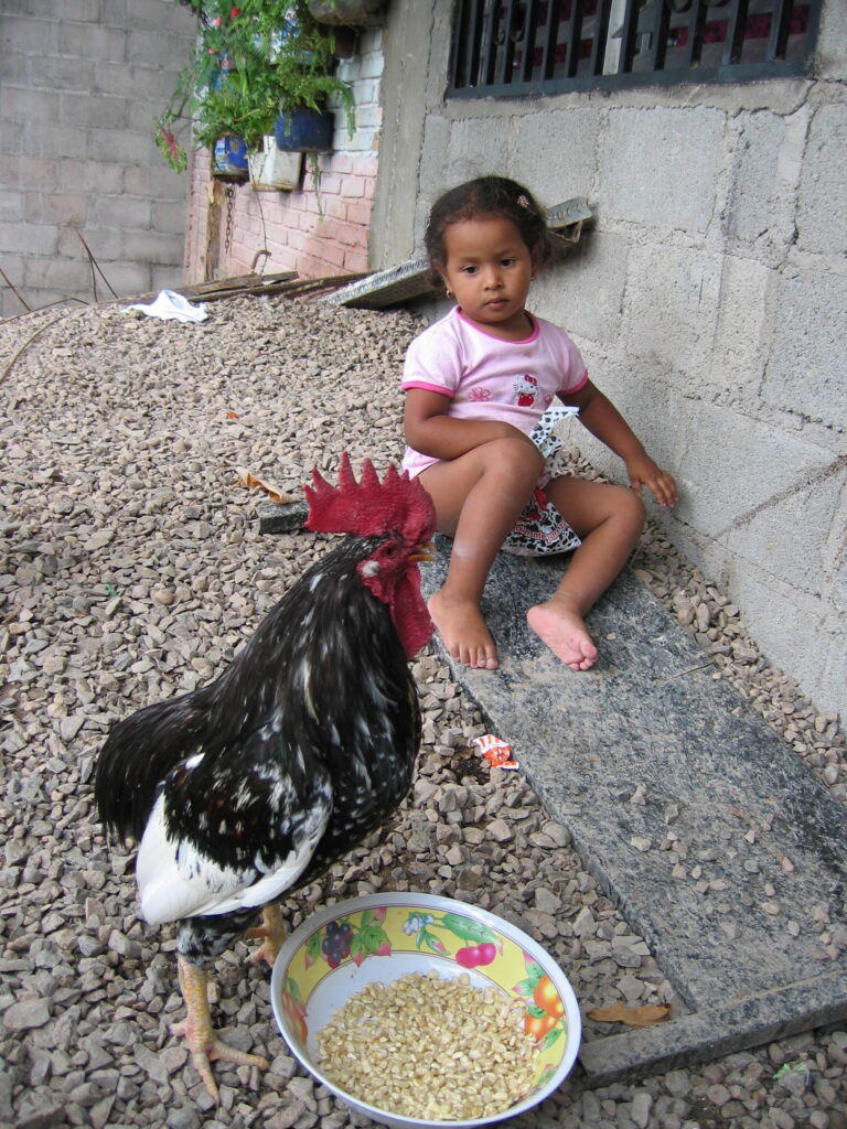 Jasmín plays outside her maternal grandmother's home in Tegucigalpa in 2003.